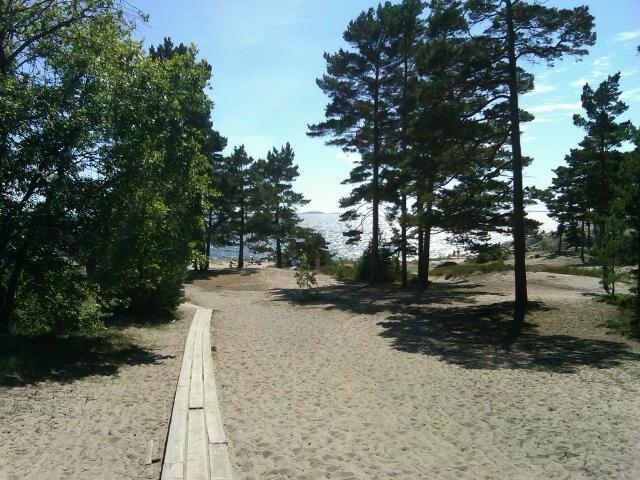 Sandhamn 6