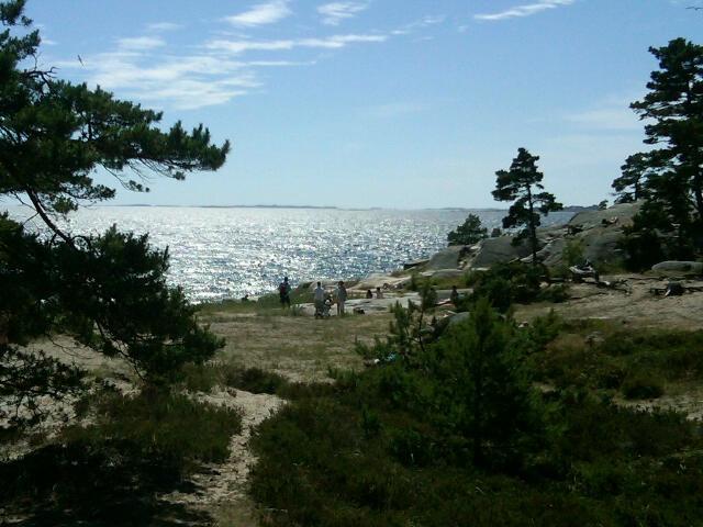 Sandhamn 8